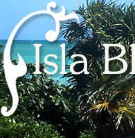 Isla Blanca, Mexico, real estate, fishing, vacation rentals